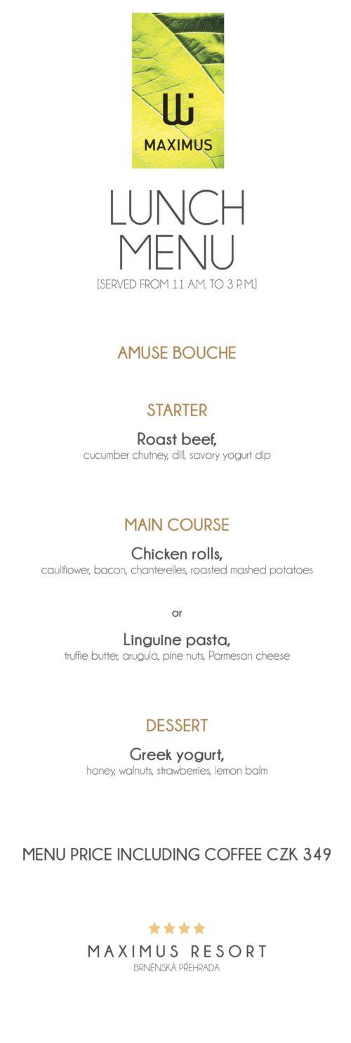 Lunch menu IX