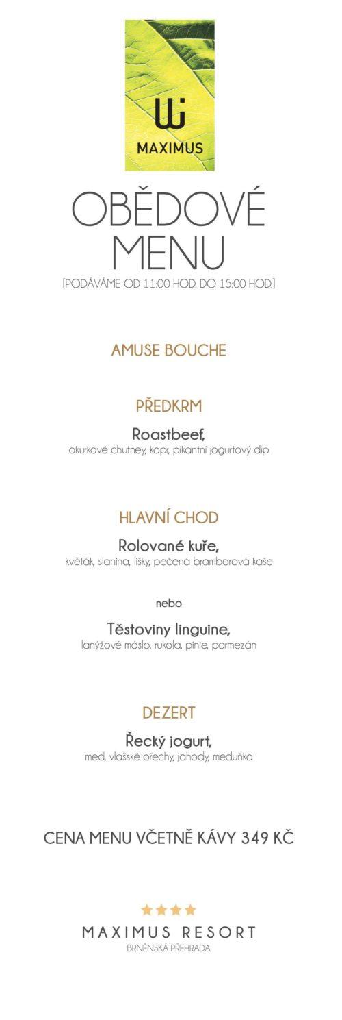 Obědové menu IX