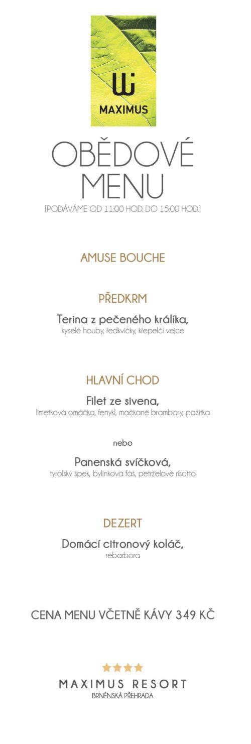 Obědové menu VIII